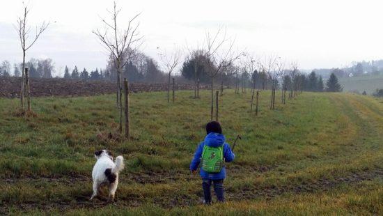 Hund Gino Spaziergang