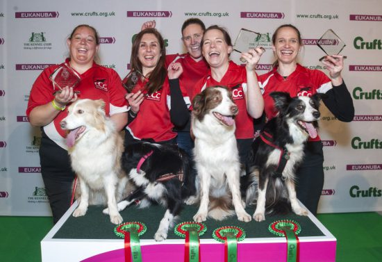 crufts-2015-agility-final-winners