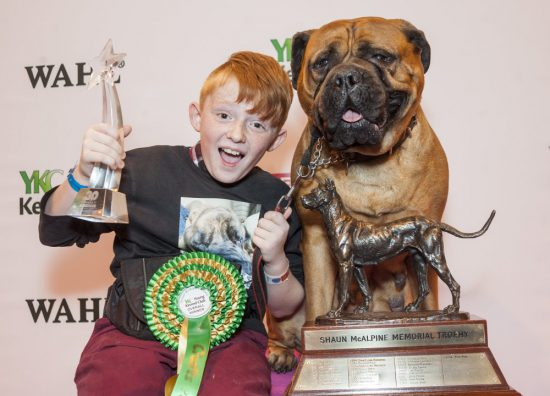 crufts 2015 world's largest dog show