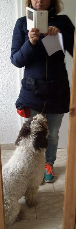 Aufbruch zur Hundeschule