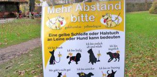 Gelber Hund Gulahund