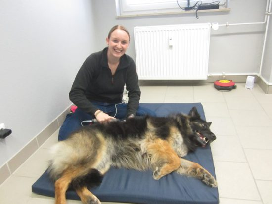Dori genießt sichtlich die Physiotherapie
