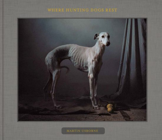 fotobuch hunting dogs