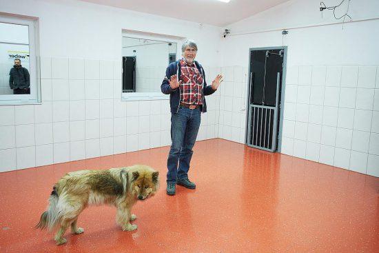 WSC Kurt Kotrschal Hund