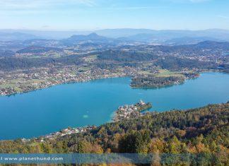 Urlaub Hund See Kärnten