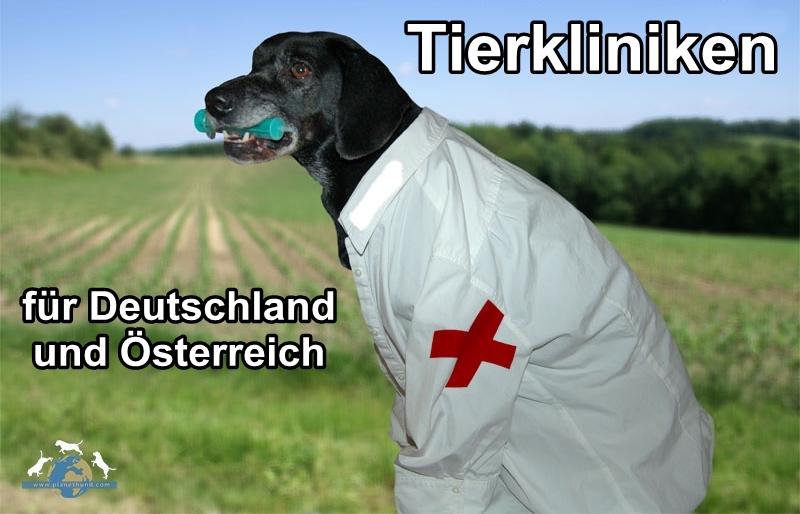 tierkliniken in deutschland planet hund