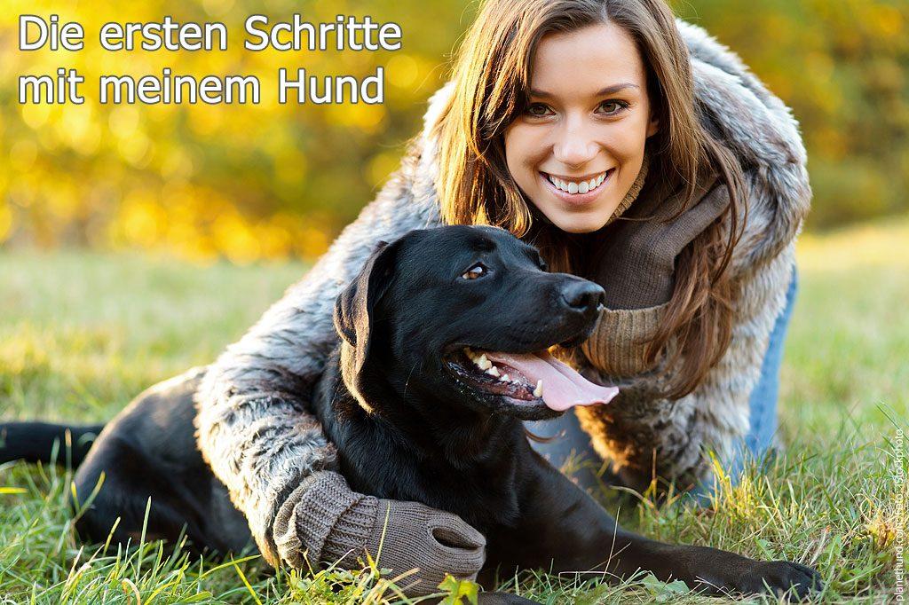 Hunderatgeber Tipps für erste Schritte mit dem eigenen Hund