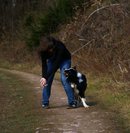 körperliches Spiel Frau Hund
