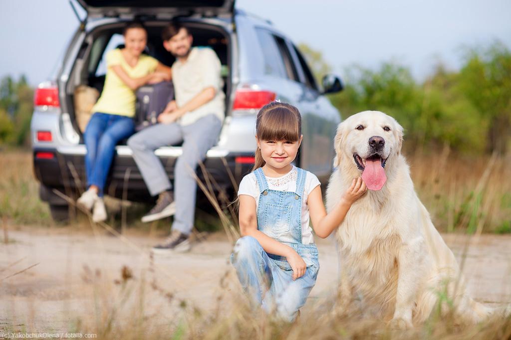 familie hund