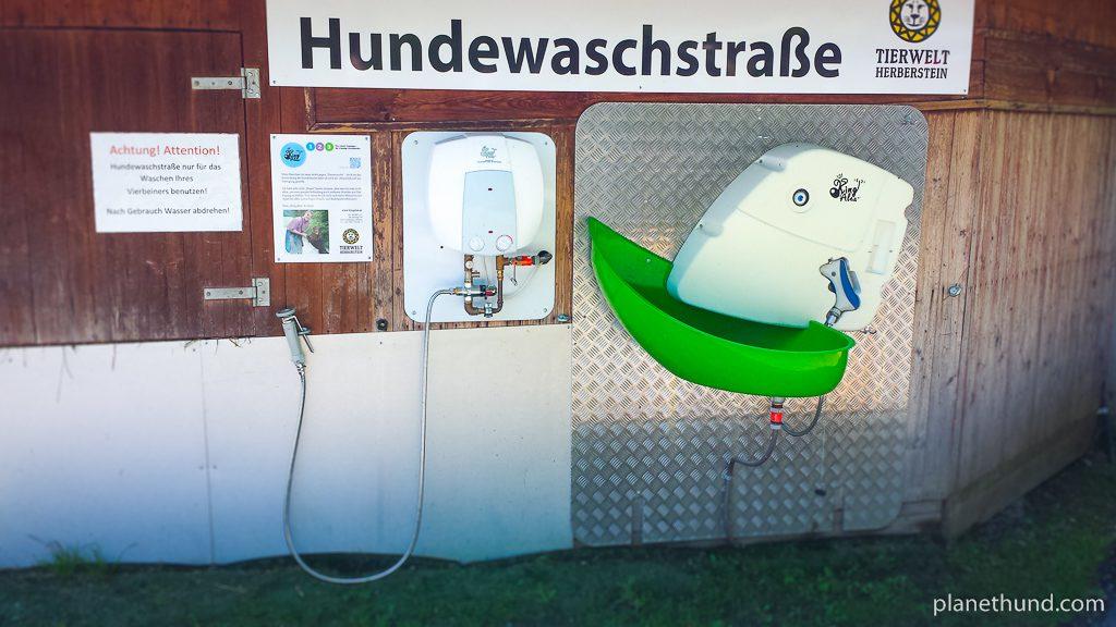 Hundewaschstraße Tierwelt Herberstein