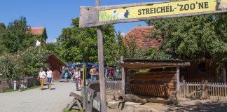Tierpark Herberstein Hunde