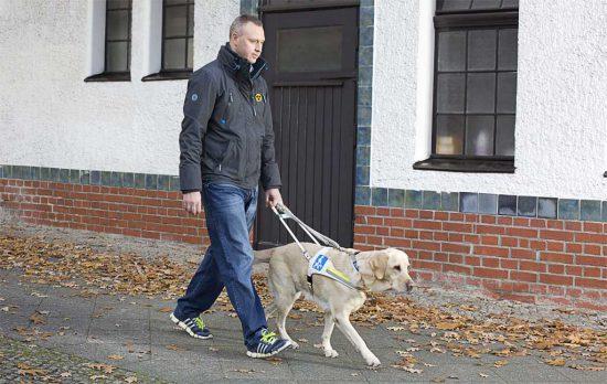 Blindenhund Strasse