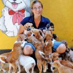 Dog Care Clinic Sri Lanka Straßenhunde
