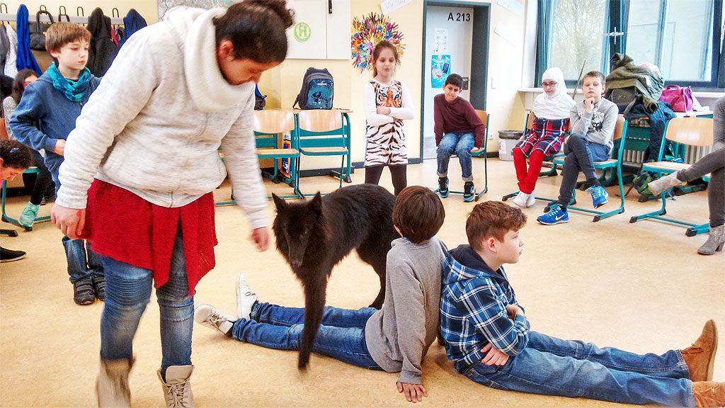 Schulhund an der Willy-Brandt-Gesamtschule Köln