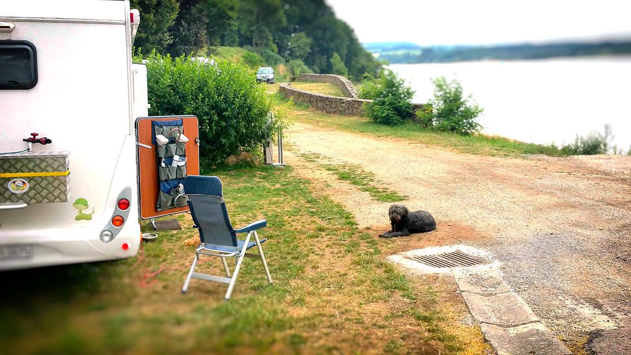 Camping mit Hund: Was du über Campingreisen wissen solltest