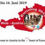 Eurodog Show