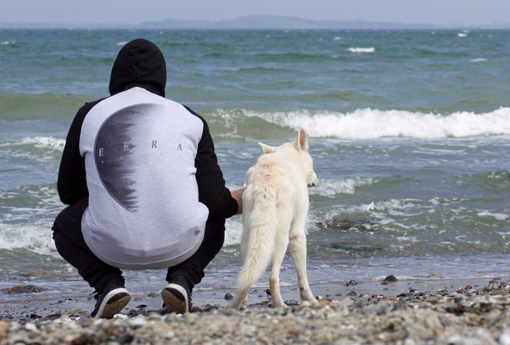 Harmonische Mensch Hund Beziehung