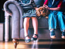 Tiere Kinder zusammen