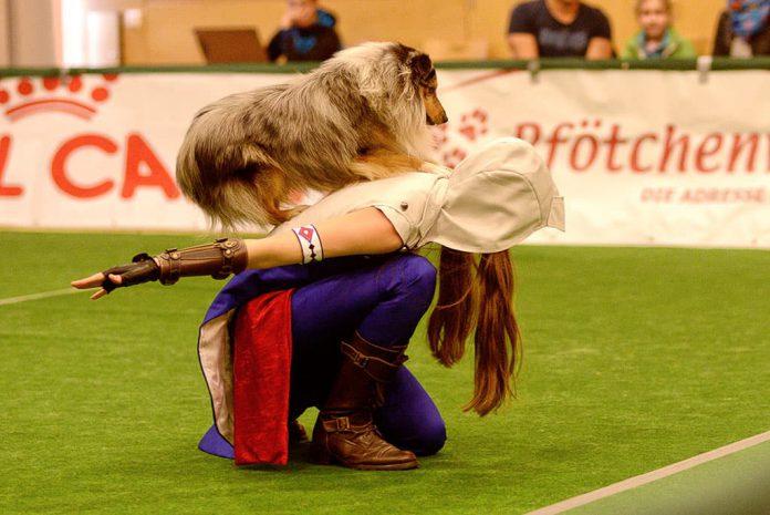Wedelwerk Dogdance Turnier