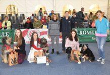 Dogdance Sieger bei der Mensch & Tier