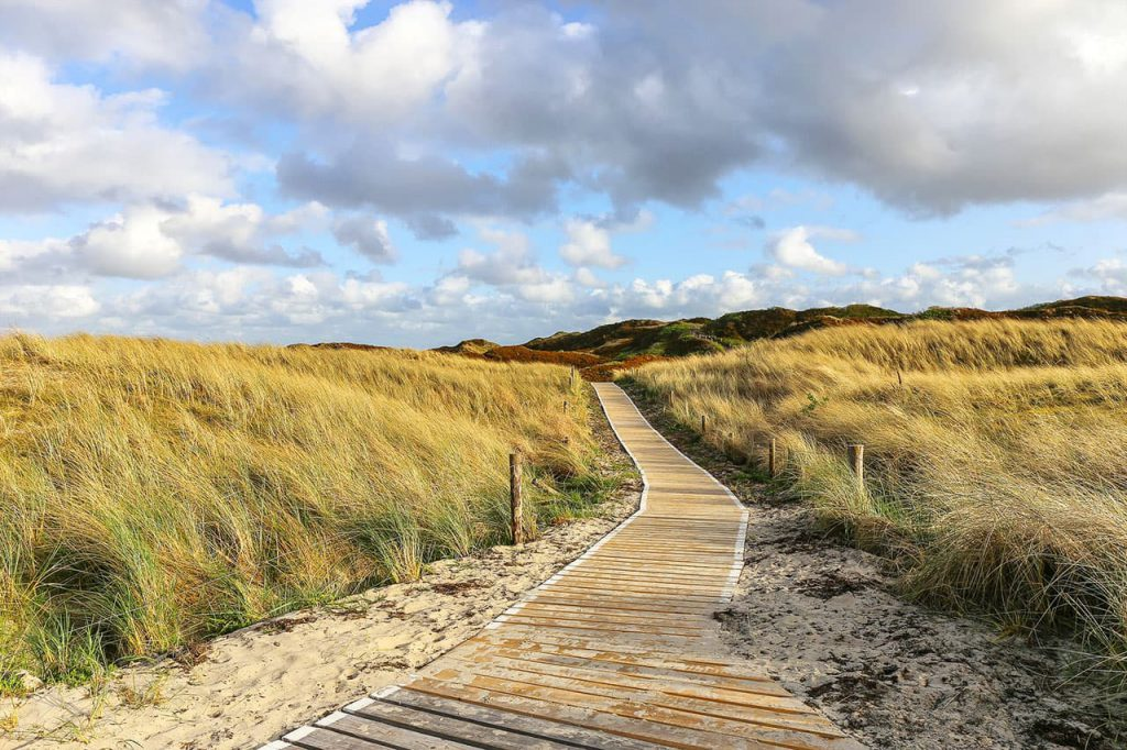 Wandern in den dänischen Dünen