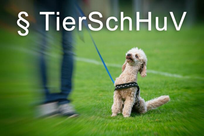 TierSchHuV