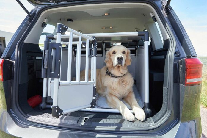 Hundetransportbox Auto ÖATMC Test