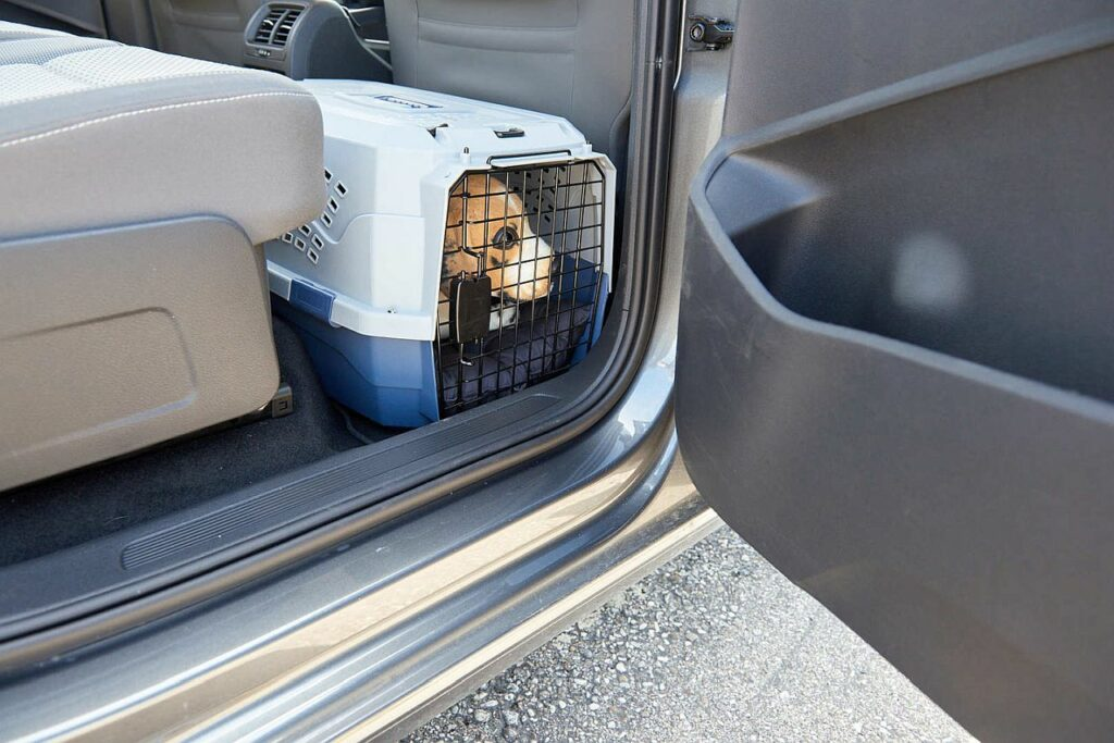 Hundetransportbox Beifahrersitz
