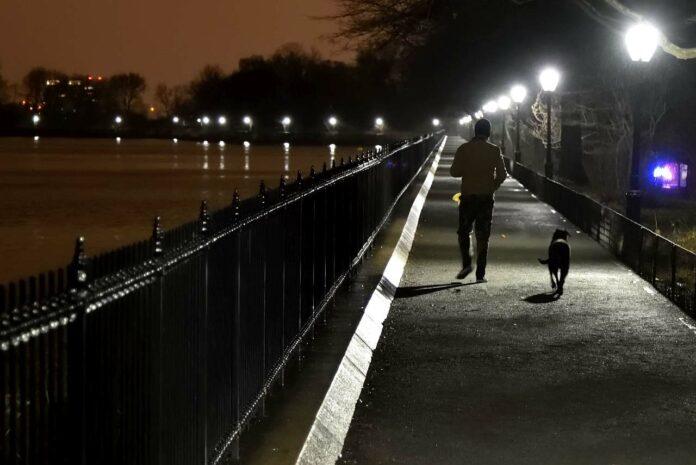 Spaziergang Hund Nacht