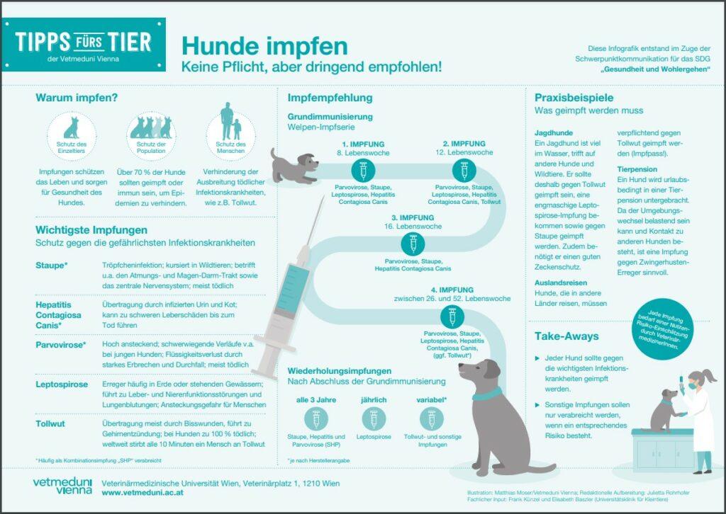 Hunde impfen Vetmeduni Vienna