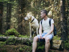 Mit Hund in der Natur