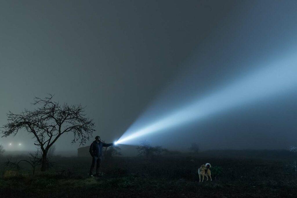 Hund Suche in der Nacht mit Taschenlampe